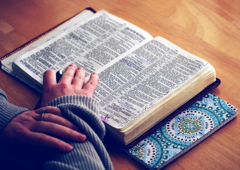 Going Deeper Bible Study Reading